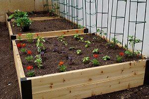 Garden beds Portland